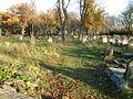 Jewish Cemetery in Piotrkow 043.jpg