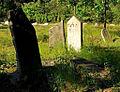 Jewish cemetery Otwock 10769236.jpg
