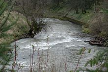 A swiftly-flowing stream about 15 feet (4.5 meters) wide goes around a bend between raised banks. A low retaining wall protects the outer bank.