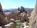 Joshua Tree National Park - panoramio (11).jpg