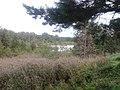 Juba tó 2.jpg