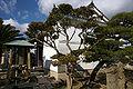 Kagakuji Ako11n4272.jpg