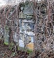 Kamienna Góra, cmentarz żydowski DSCF3945.jpg
