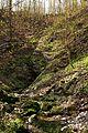 Karstquelle Wasserhoehle-Forellenloch Weissenstein Schwaebische Alb.jpg