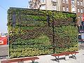 Katowice pionowy ogrod.jpg