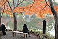 Koishikawa Korakuen.jpg