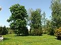 Kostelec (Zlín), lázně, park (2).jpg