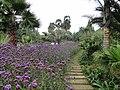 Kunming Botanical Garden - DSC03097.JPG