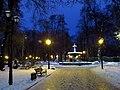 Kyiv-Miskyi park-evening in November.jpg
