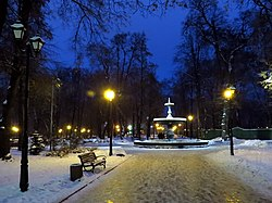 Kyiv-Miskyi park-evening in November.jpg