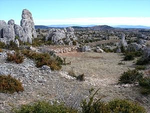 Larzac - Typical Larzac landscape.
