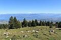 La Dôle - panoramio (4).jpg