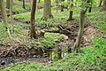 Lage - 2015-05-17 - LSG-4018-0011 Sunder- und Bruchbachtal (1).jpg