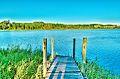 Lagoa da Ervedeira Patrimonio Natural 05.jpg
