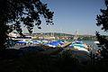 Lake Zurich (7889397498).jpg