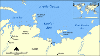 Marginal sea in the Arctic Ocean north of Siberia between the Kara Sea and the East Siberian Sea