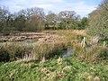 Large Pond near Stryt-cae-rhedyn. - geograph.org.uk - 314243.jpg