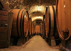 Large botti size oak barrels in Chianti.jpg