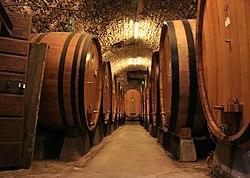 Large botti size oak barrels in Chianti.jpg