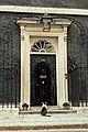 Larry the cat waiting to be let into 10 Downing St.jpg