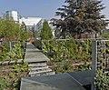 Le Jardin des Géants à Lille - Murs végétaux - panoramio.jpg