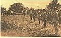 Le Miroir, n°144 (p.7) (ANZAC).jpg