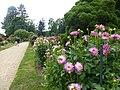 Le jardin du thabor - panoramio (5).jpg