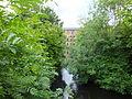 Leeds Industrial Museum mill pond 7192.JPG