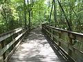 Little River Trail 09, Reed Bingham Park.JPG