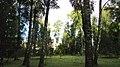Lobnya, Moscow Oblast, Russia - panoramio (101).jpg