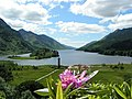Loch Shiel from Glenfinnan viewpoint - geograph.org.uk - 204100.jpg