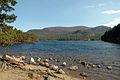 Loch an Eilein - geograph.org.uk - 725916.jpg