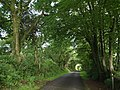 Long Lane - geograph.org.uk - 476012.jpg
