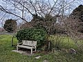 Long shot of the bench (OpenBenches 4374-2).jpg