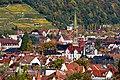 Lorettoberg-Ansichten (Freiburg im Breisgau) jm54241.jpg