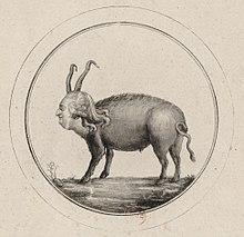 220px-Louis_XVI_pig_caricature