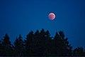 Lunar Eclipse 2018 SG 016 (29823674988).jpg