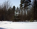 Lyovintsy, Kirovskaya oblast', Russia, 612079 - panoramio (26).jpg