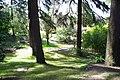 MADRID A.V.U. JARDIN DEL CAMPO DEL MORO - panoramio - Concepcion AMAT ORTA… (12).jpg