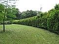Maasmechelen Leut Dreef Kasteelpark Vilain XIIII Berceau - 203888 - onroerenderfgoed.jpg