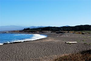MacKerricher State Park - Image: Mac Kerricher Beach
