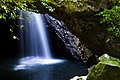 Macgregor Falls and Cave Creek in Springbrook National Park 02.jpg