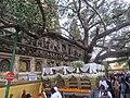 Mahabodhi temple and around IRCTC 2017 (76).jpg