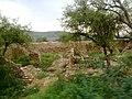 Mammu Thal road 15 - panoramio.jpg
