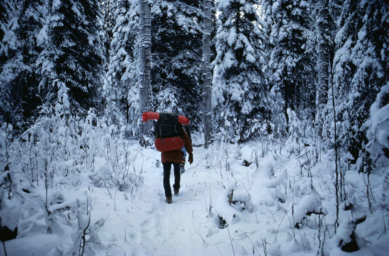 Image Result For First Winter For