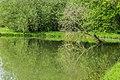 Mare de Mezeilles 12.jpg
