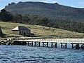 Maria Island view.jpg