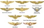 Marine Aviation.png