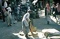 Market in Tayif 1 by Tom And Linda Anderson 3753333524.jpg
