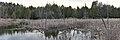 Marsh - Guelph, Ontario 2020-04-18 (05).jpg